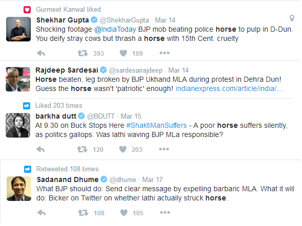 Injured Horse Media Bigshots