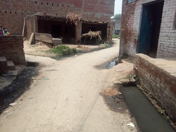 Village Road Outside Somvati house