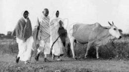 Party of Gandhi