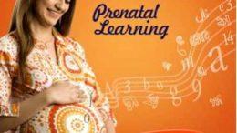 Garbha sanskar Pregnancy