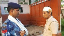 Cow smugglers injure two cops