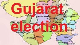 Gujarati Voter